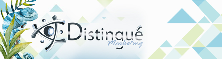 Marketing Agency Services for small companies